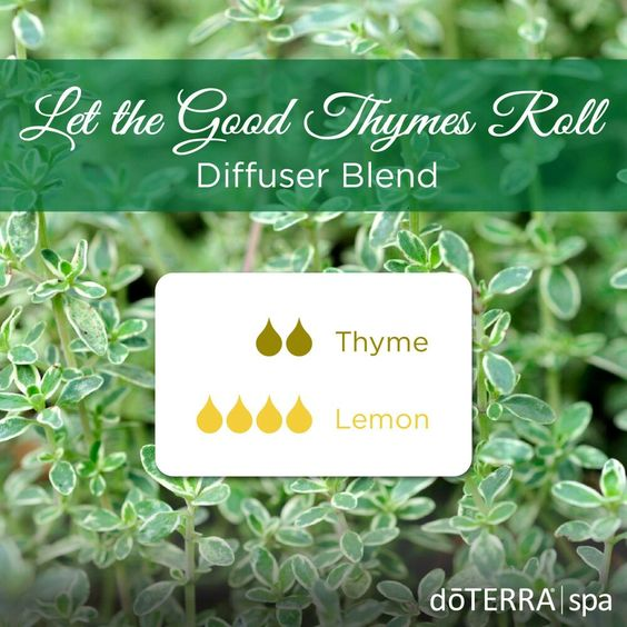 Inspiration Board Lemon Thyme Diffuser Blend