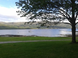 View from the cottage in early evening