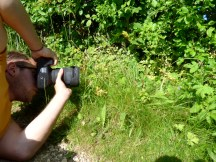 Matt photographing Bee Orchid (Ophrys apifera)