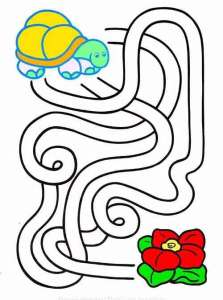 labirint17