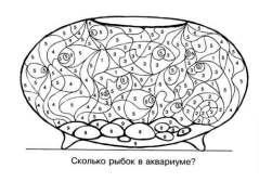raskraski_po_chislam11
