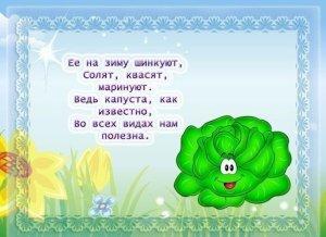 stihi_pro_ovoshi13