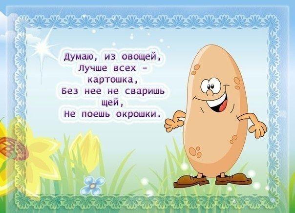 К Чему Снится Морковь Вырывать С Грядки