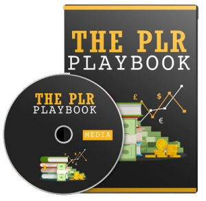 plr-playbook-workshop-video