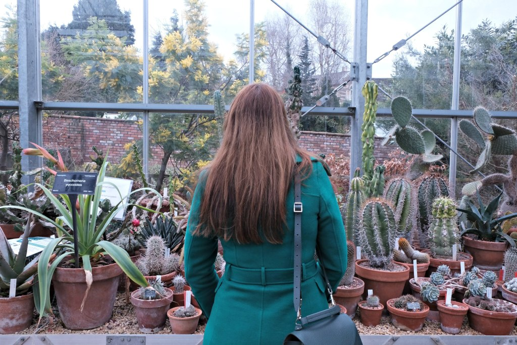 Picture of me in the greenhouse.  48 hours in clifton itinerary.