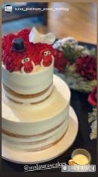 razorback wedding cake, grooms cake