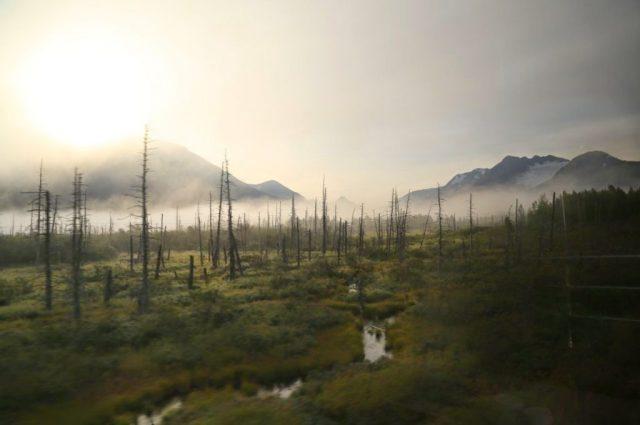 View from the window, Alaskan Railways train, Alaska