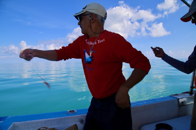 fishing trip,  holbox,yucatan, mexico