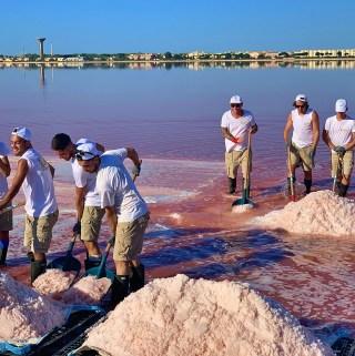 sauniers harvesting salt in the Camargue, la Baleine, France pix: Kerstin Rodgers/msmarmitelover.com