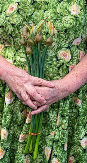 garlic scapes pic: Kerstin rodgers/msmarmitelover.com