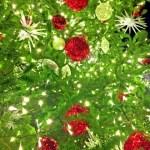 2018仙台クリスマスマーケット情報