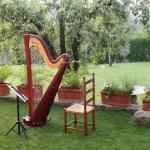 ハープを弾いてみませんか?~きれいな音楽が聴きたい~