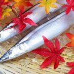 秋の恵・秋刀魚 女川 さんま祭り 2019 9/29(日) 振る舞い(募金制)
