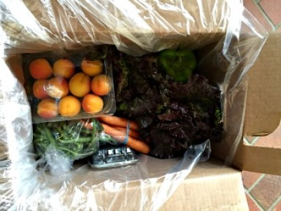 Farm-Fresh-To-You-Inside
