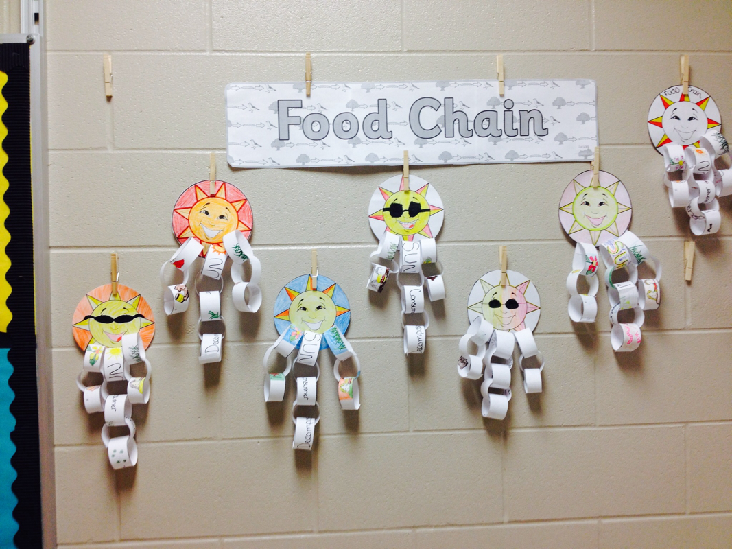 Food Chain Projects