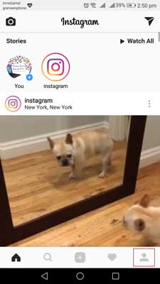Step1 change instagram password android iphone