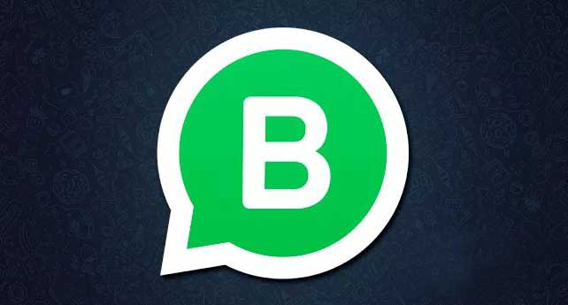 WhatsApp Business What are they gray and green bagdes