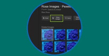 Recover Google Image search View Image Button