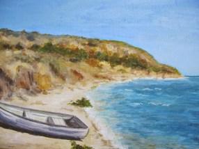 Costinesti beach