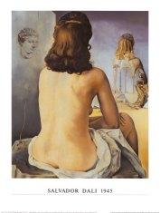salvador-dali-ma-femme-nue-regardant-son-porpe-corps