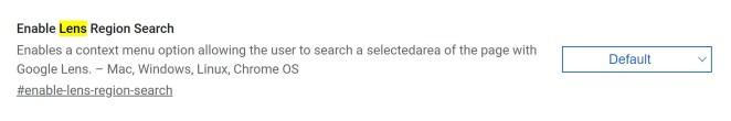 Google, Google Lens Görsel Arama'yı Chrome Canary'ye ekler 14