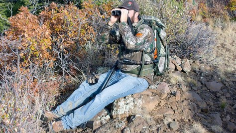 Hunting in National Parkis