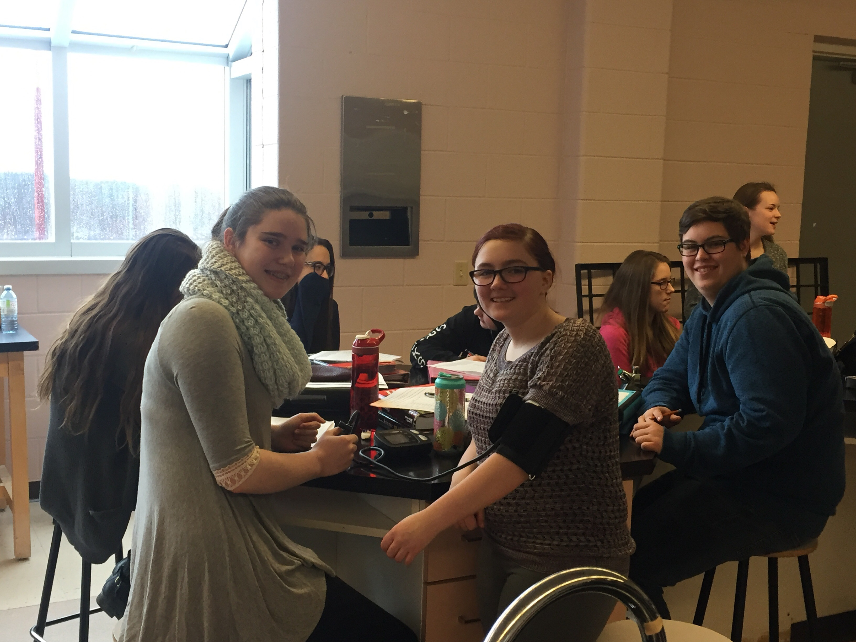 Blood Pressure Lab A Success In Biology Ms T