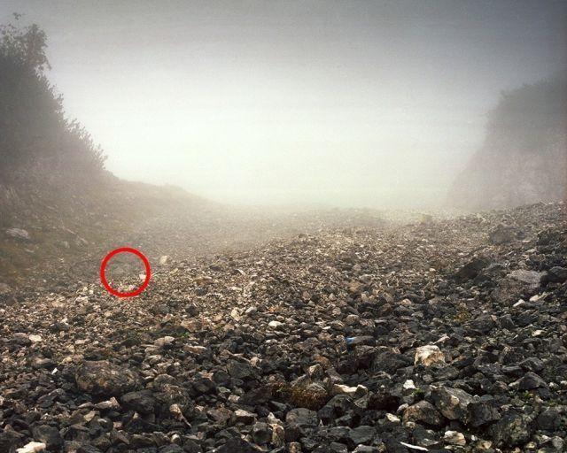 狙擊手隱身出任務  找到眼睛快瞎了還是找不到 12