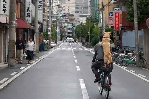 帶你走進日本,看到最後一張我徹底崩潰了!!