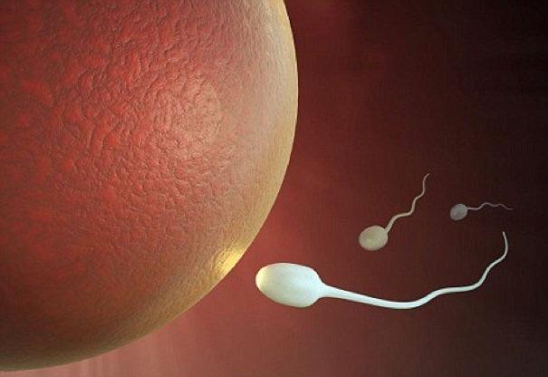 正常精子是什麼顏色?從精液顏色可以看出男人健康!