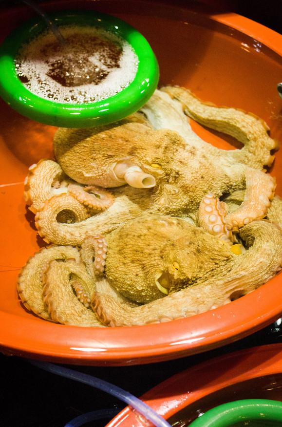 最奇怪的世界10大危險食物,還不知道的必看!