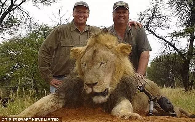 一個醫生殺了一頭獅子導致昨晚帝國大廈變成這樣