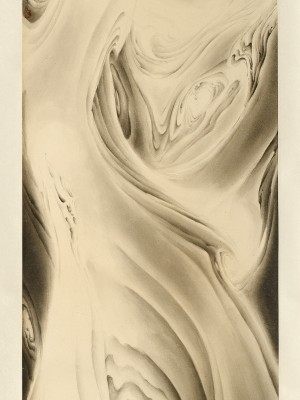 2012, ink on paper, mounted as hanging scroll, 51.25 x 17.75 inches