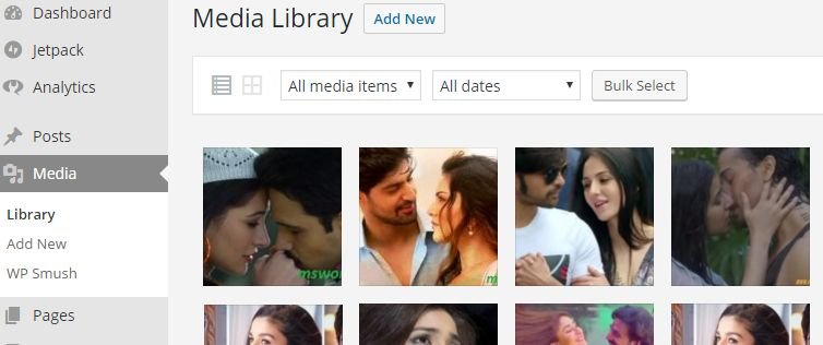 Fixed Media gallery issue in wordpress