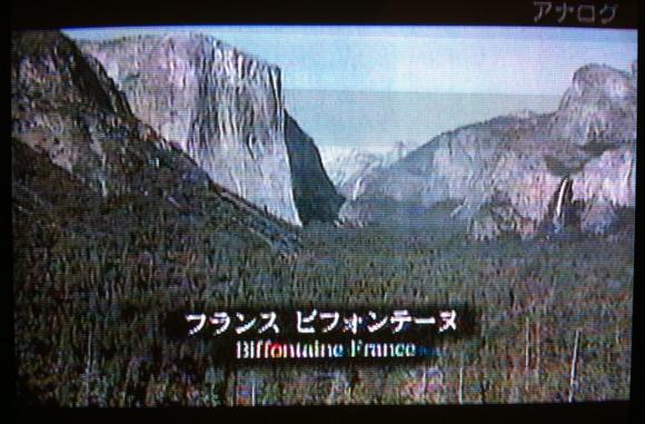 フランス ビフォンティーヌ?