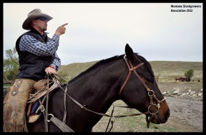 rich roth ix ranch montana stockgrowers
