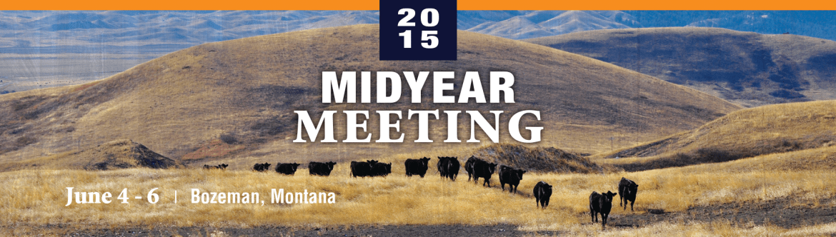MidYear Meeting 2015