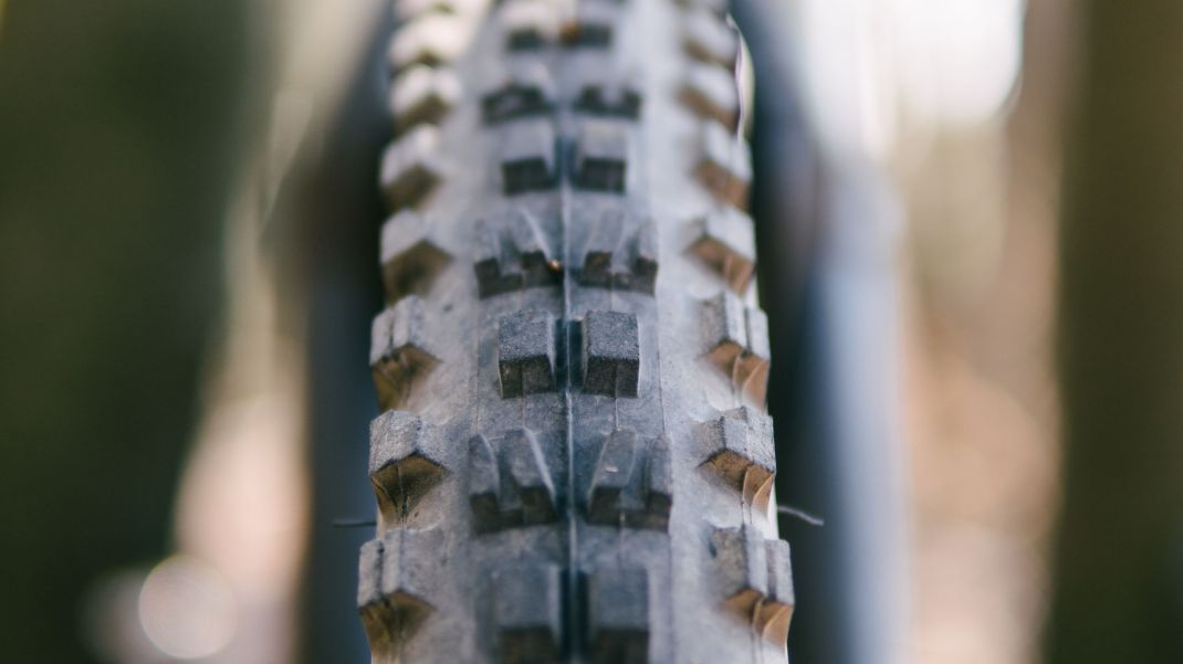 Maxxis Minion DHF Tread Up Close