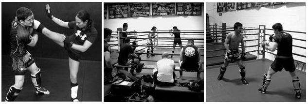 Best Muay Thai Boxing Gym   Midwest Training Center   MTC MMA
