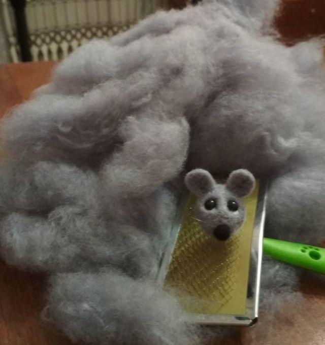 Как получить шерсть для валяния, фото № 8