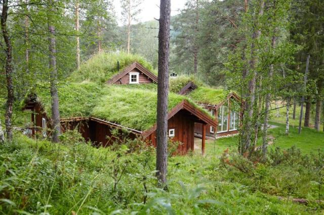Бревенчатый дом в Норвегии