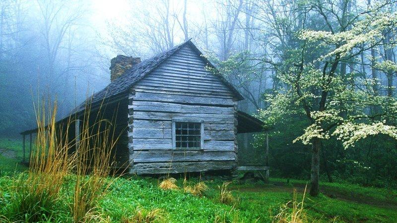 Как я в лесной избушке со скелетом ночевал жизнь, избушка, истории, лес, мистика, тайга