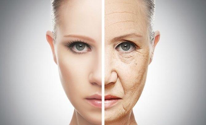 Интересные факты о коже человека, Кожа лица стареет