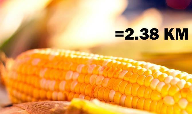 Початок вареной кукурузы