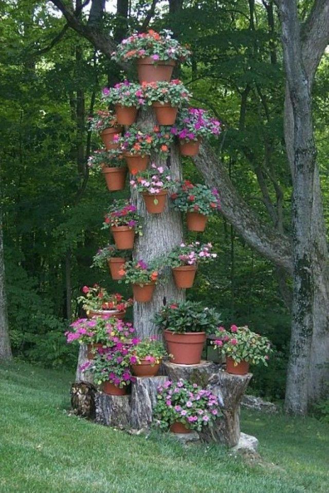 Старое дерево можно успешно использовать как подставку для цветочных горшков