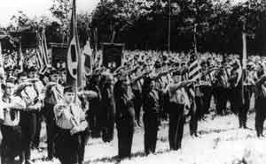молодежь и Американская нацистская партия
