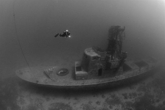 Как у Франции корабли угоняли