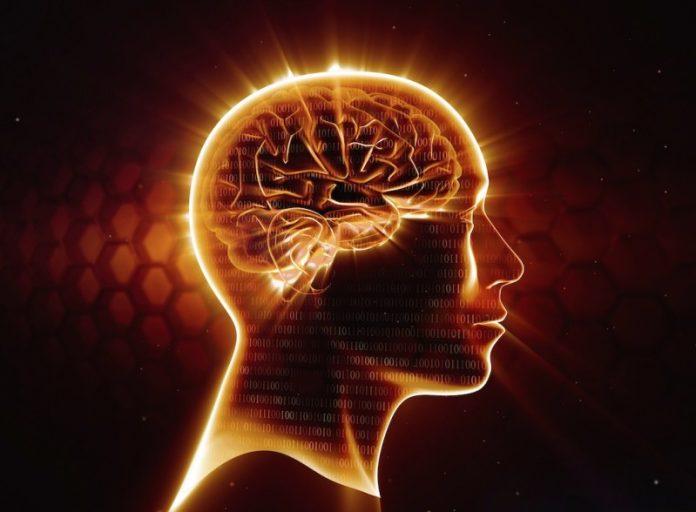 Память человека: невероятные факты, которые вас удивят!