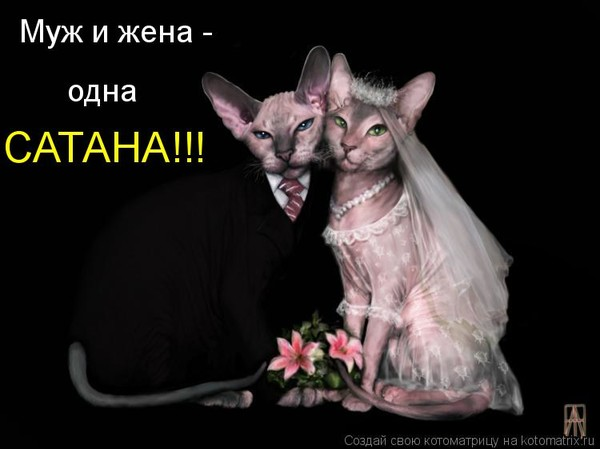 Муж и жена...