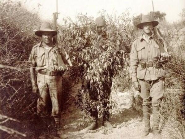 1916 год интересно, история, фото